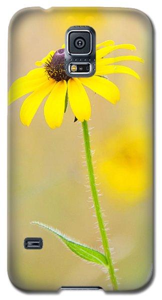 Sunny Galaxy S5 Case