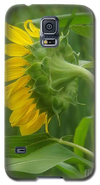 Sunny Profile Galaxy S5 Case by Sara  Raber
