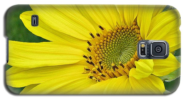 Galaxy S5 Case featuring the photograph Sunny Side Up by Janice Westerberg