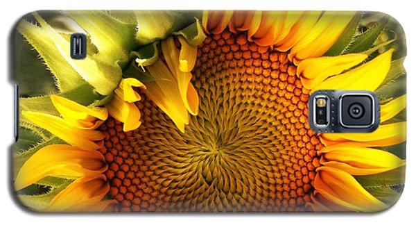 Sunny Sunflower Galaxy S5 Case