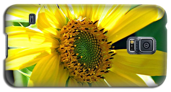 Galaxy S5 Case featuring the photograph Sunny Sunflower  by Lila Fisher-Wenzel