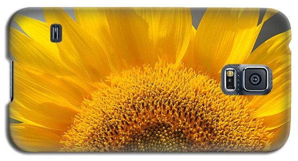 Galaxy S5 Case featuring the photograph Sunny Sunflower by Olivia Hardwicke