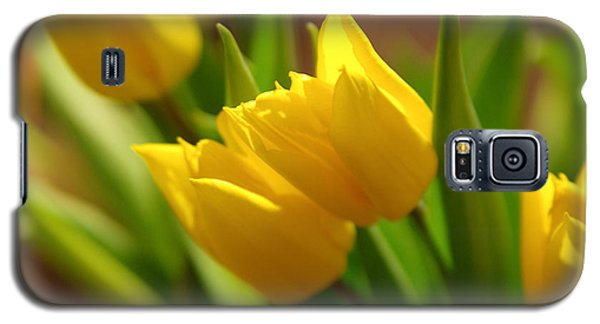 Galaxy S5 Case featuring the photograph Sunny Tulips by Erin Kohlenberg