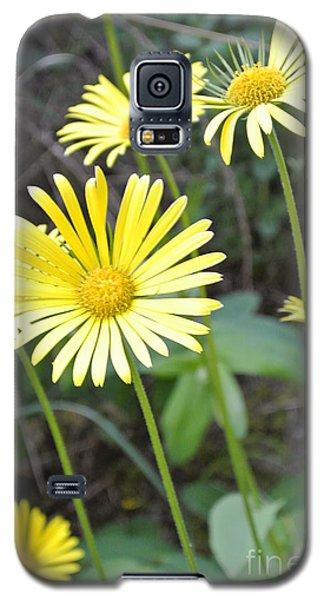 Sunny Yellow Galaxy S5 Case
