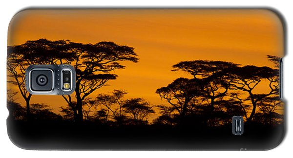 Galaxy S5 Case featuring the photograph Sunrise Acacias  by Chris Scroggins