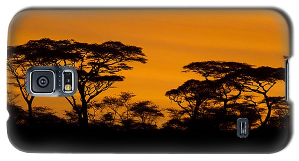 Sunrise Acacias  Galaxy S5 Case