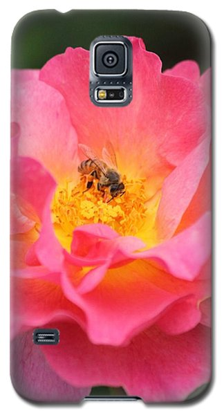 Galaxy S5 Case featuring the photograph Sunrise by Amy Gallagher