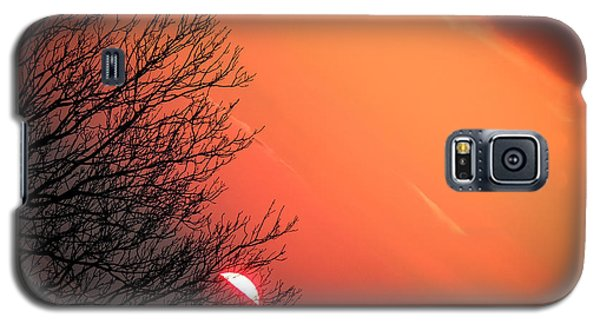 Sunrise And Hibernating Tree Galaxy S5 Case