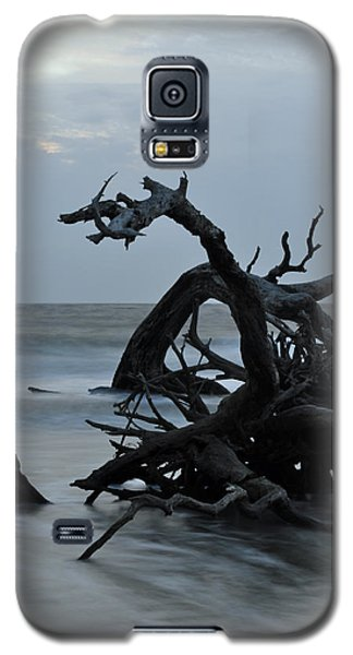 Sunrise At Driftwood Beach 6.7 Galaxy S5 Case