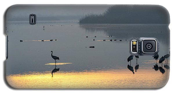 Sunrise Over The Hula Valley Israel 1 Galaxy S5 Case