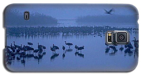 Sunrise Over The Hula Valley Israel 4 Galaxy S5 Case