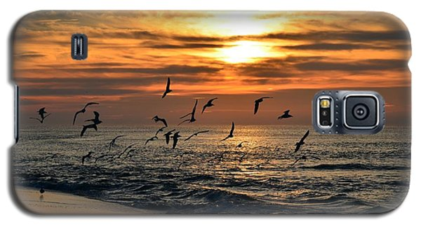 Galaxy S5 Case featuring the photograph Sunrise Colors Over Navarre Beach With Flock Of Seagulls by Jeff at JSJ Photography