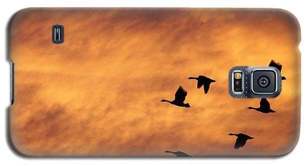 Sunrise Flight 2 Galaxy S5 Case
