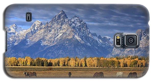 Sunrise Grazing Galaxy S5 Case
