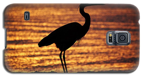 Galaxy S5 Case featuring the photograph Sunrise Heron by Leticia Latocki