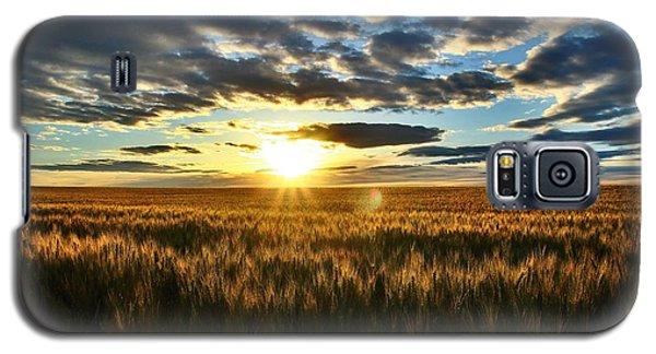 Sunrise On The Wheat Field Galaxy S5 Case by Lynn Hopwood