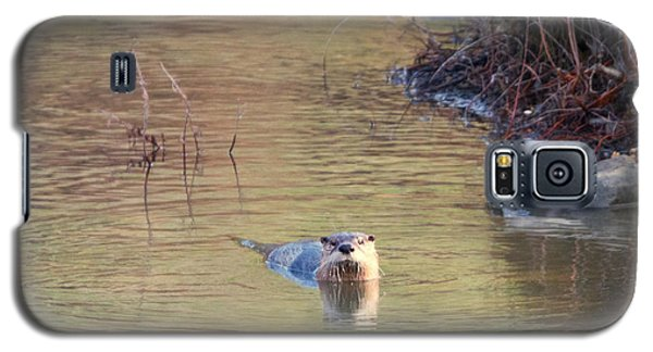 Otter Galaxy S5 Case - Sunrise Otter by Mike Dawson