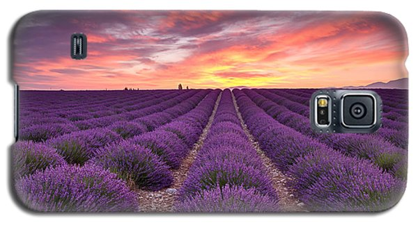 Sunrise Over Lavender Galaxy S5 Case