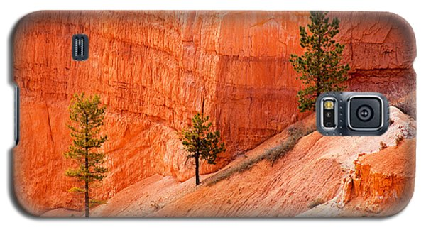 Sunrise Point Bryce Canyon National Park Galaxy S5 Case