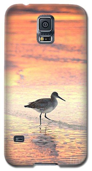 Sunrise Shorebird Galaxy S5 Case by Henry Kowalski