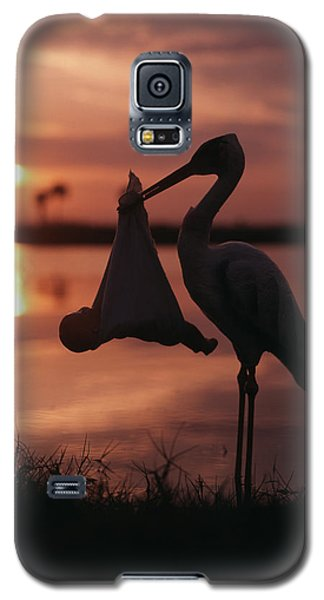 Sunrise Silhouette Of Stork Carrying Galaxy S5 Case