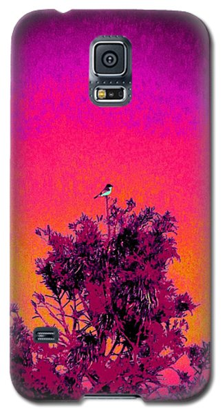 Galaxy S5 Case featuring the painting Sunrise To Sunset Nature Is Beautiful by David Mckinney