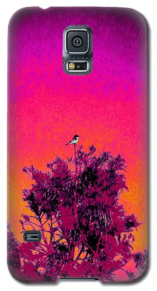 Sunrise To Sunset Nature Is Beautiful Galaxy S5 Case