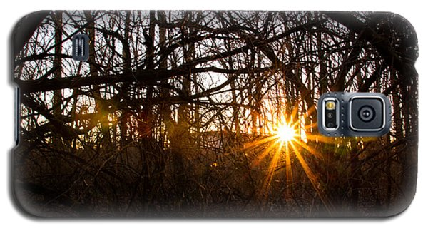 Sunset And Vine Galaxy S5 Case by Haren Images- Kriss Haren