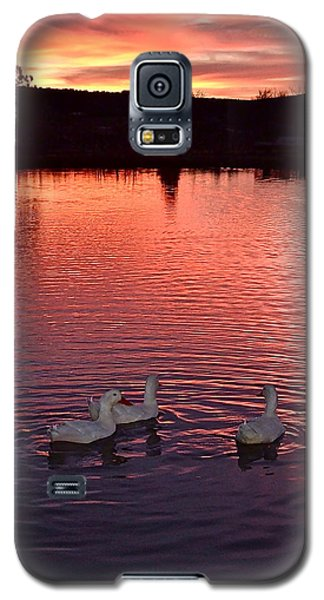 Sunset At Duckpond Galaxy S5 Case