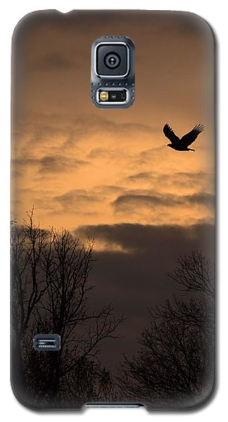 Sunset Eagle Galaxy S5 Case
