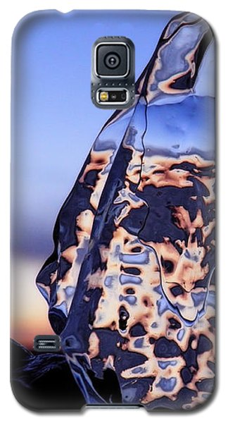 Sunset Fish Galaxy S5 Case
