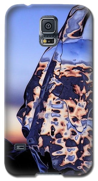 Galaxy S5 Case featuring the photograph Sunset Fish by Sami Tiainen