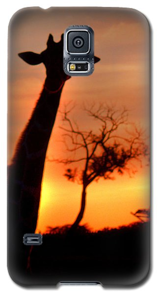 Sunset Giraffe Galaxy S5 Case