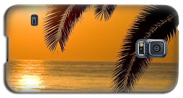 Sunset Golden Color With Palm Galaxy S5 Case