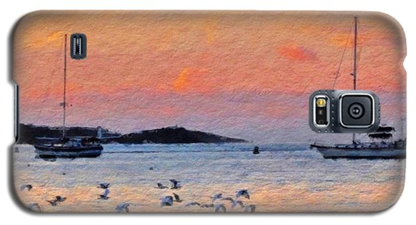 Sunset Harbor With Birds - Square Galaxy S5 Case