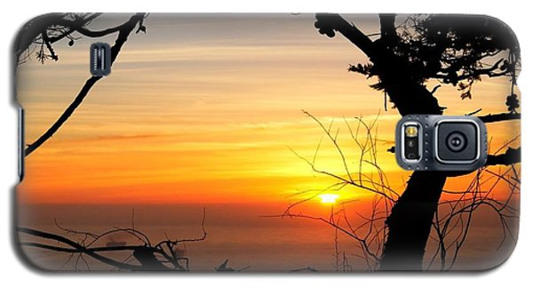 Sunset In A Tree Frame Galaxy S5 Case