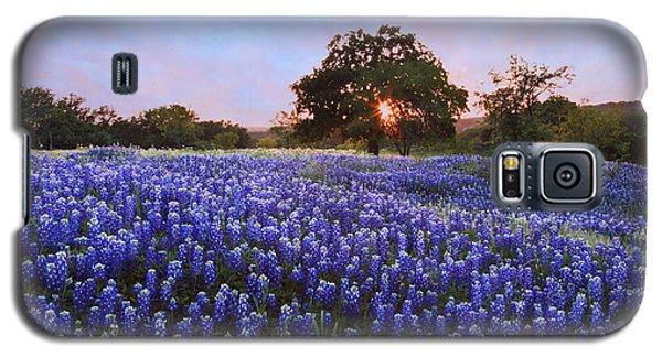 Sunset In Bluebonnet Field Galaxy S5 Case