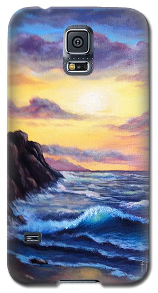 Sunset In Colors Galaxy S5 Case