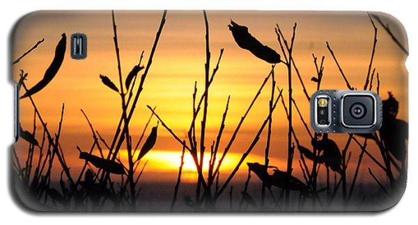 Sunset In Half Moon Bay Galaxy S5 Case