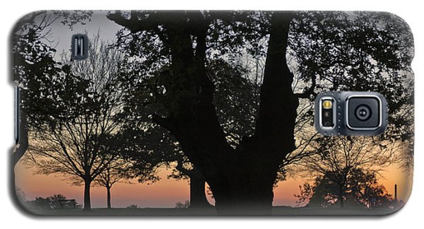Sunset In Richmond Park Galaxy S5 Case