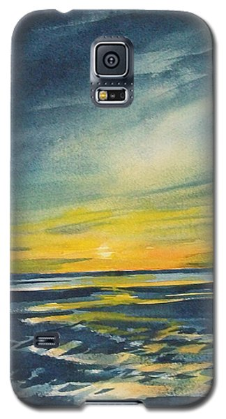 Galaxy S5 Case featuring the painting Sunset by Jane See