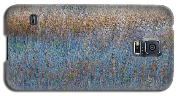 Sunset Marsh In Blue And Gold Galaxy S5 Case