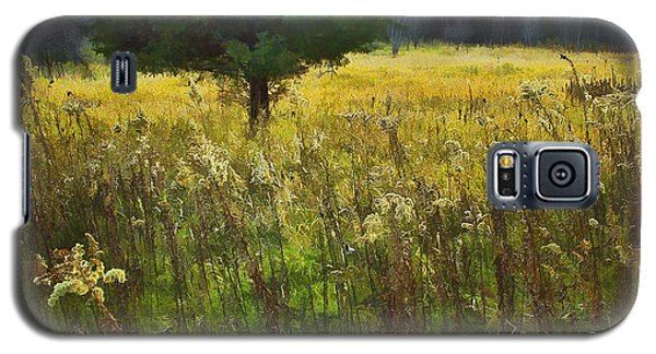 Galaxy S5 Case featuring the photograph Sunset Meadow by John Hansen
