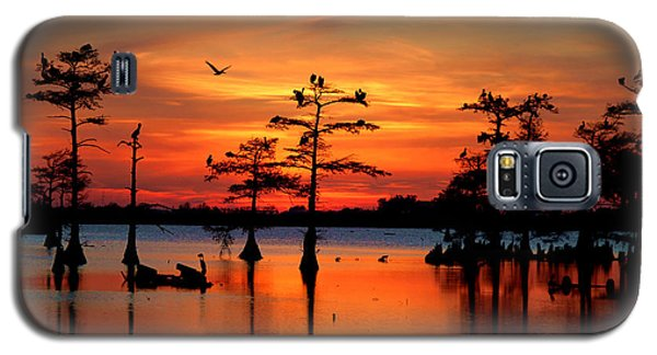 Alligator Galaxy S5 Case - Sunset On The Bayou by Carey Chen