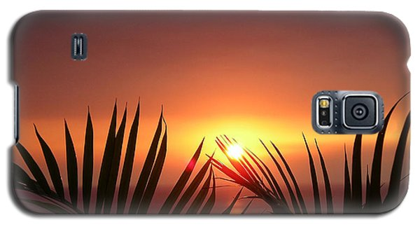 Sunset Palms Galaxy S5 Case by Karen Nicholson