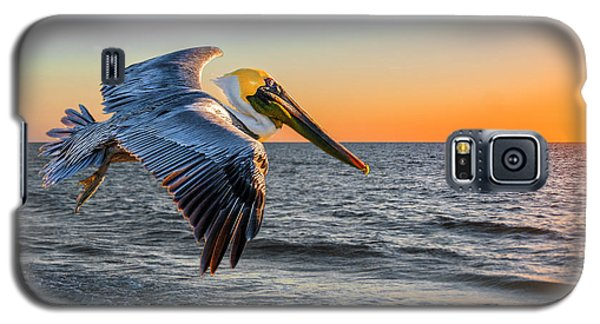 Galaxy S5 Case featuring the photograph Sunset Pelican by Brian Tarr