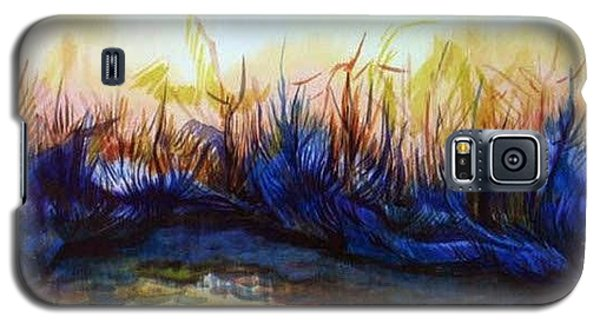 Sunset Reflections Galaxy S5 Case by Anna  Duyunova