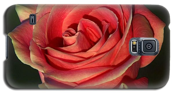 Galaxy S5 Case featuring the photograph Sunset Rose by Shirley Mangini
