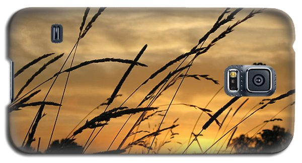 Sunset Sentinels Galaxy S5 Case