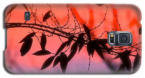 Sunset Serenade Galaxy S5 Case